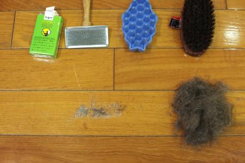 ブラシと今回の抜け毛とフケ